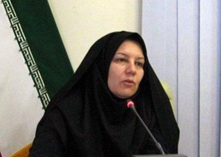 دوره آموزشی برای داوطلبان عضویت در شوراها برگزار میشود